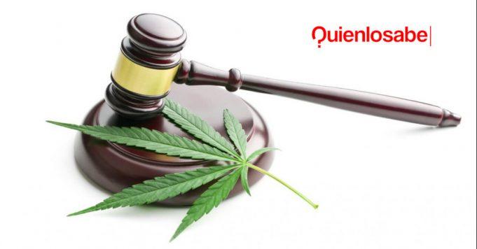 cannabis marihuana onu legal